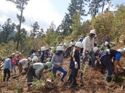 森林環境教育の推進