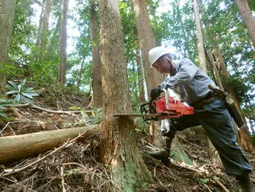 森を守り育てるボランティア1