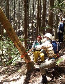 森を守り育てるボランティア2