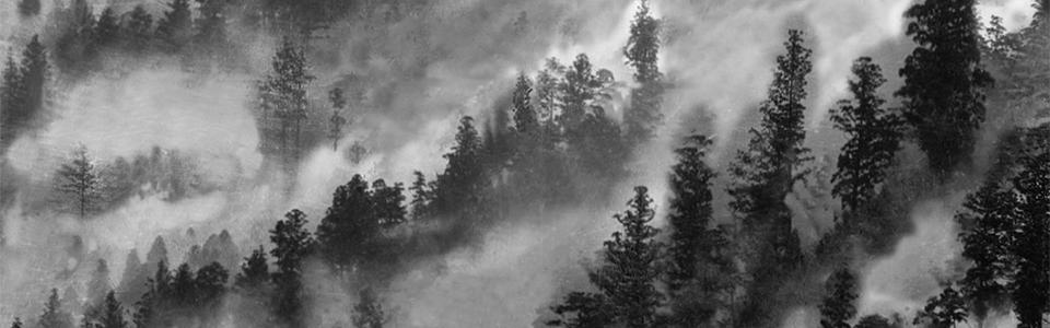 霧のかかる魚梁瀬山もりひとサイズ